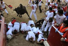 A wild cow leaps over a group of revellers following the seventh running of the bulls at the San Fermin festival in Pamplona July 13, 2012. REUTERS-Eloy Alonso