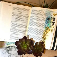 Bible Journaling Entry by Jamie Dougherty on Live With Prima.