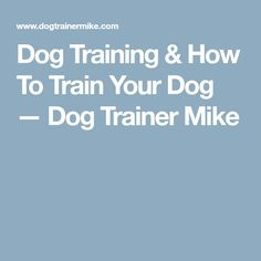 Dog Training & How To Train Your Dog — Dog Trainer Mike