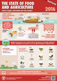 The State of Food and Agriculture: Adaptation