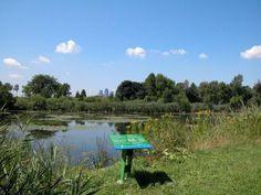 Montreal Canada, Water Quality, Design Awards, Urban Design, Golf Courses, Environment, Park, Building, Beach