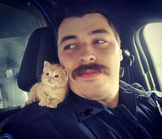 雨の中、警察官に救われた子猫。新しい家で運命の出会いが待っていた (4枚)|ペットフィルム -犬・猫・ペットの画像・動画まとめ petfilm.biz