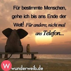 nice lustiges Bild 'IMG Eine von 60125 Dateien in der K. Positive Quotes, Motivational Quotes, Best Online Casino, Men Quotes, Quotes Images, Happy Quotes, Man Humor, Me On A Map, Cool Words
