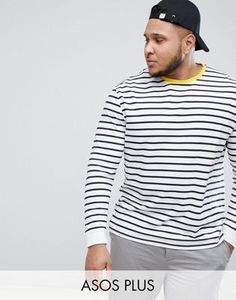 2df3bd40637fc8 ASOS DESIGN Plus stripe relaxed long sleeve t-shirt in white and navy with  contrast