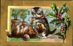 Kittens A Merry Christmas To You