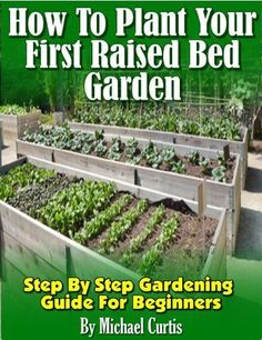 How To Plant Your First Raised Bed Garden by Michael Curtis, free 4/19/13