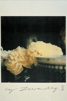 cy twombly polaroid photography flowers