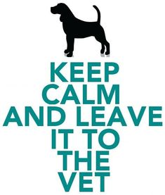 Keep Calm and Leave it to the Vet