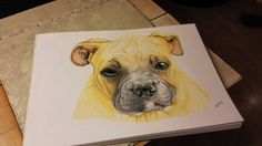 """Dog. Made only with crayons """"Derwent Watercolour""""."""