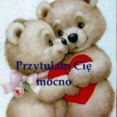 Kochi, Chibi, Photos, Pictures, Teddy Bear, Humor, Day, Funny, Animals