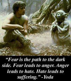 """""""El miedo es el camino hacia el lado oscuro. El miedo lleva a la ira. La ira lleva al odio. El odio lleva al sufrimiento """"."""