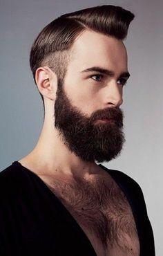 undercut:beard   Hair-