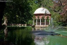 Detalle de estanque en el Parque de María Luísa, Sevilla. #Sevilla #Seville #sevillaytu @sevillaytu