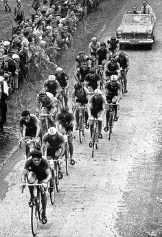 Tour de France 1954
