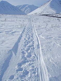 Iditarod National Historic Trail, Seward-to-Nome, Alaska