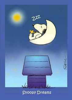 Snoopy Dreams ~ 9vVPGQg.jpg