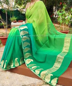 Designer Pure Chiffon Saree with Multi Hue Finish & Zari border