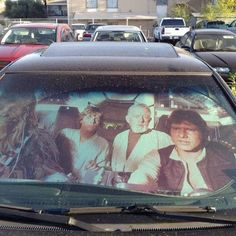 Want this window shade!!!