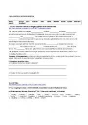 Nervous System Worksheet | Biology | Pinterest | Nervous system ...