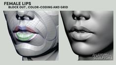 Uldis Zarins is raising funds for Form of The Head and Neck - by Anatomy For Sculptors on Kickstarter! Form of The Head and Neck. This is human anatomy for artists. Making Anatomy Visual And Understandable! Facial Anatomy, Head Anatomy, Anatomy Drawing, Anatomy Art, Anatomy Books For Artists, Zbrush Anatomy, Female Lips, Female Face, Lip Tutorial
