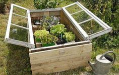 idee recup jardin serre fenetre