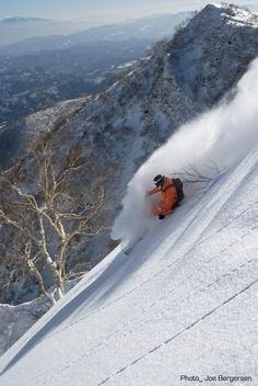 Skiing in Hakuba - Japan- 2015... or so I have been told... not arguing!!