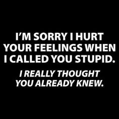 I'm sorry I hurt your feelings when I called you stupid. I thought you already knew.