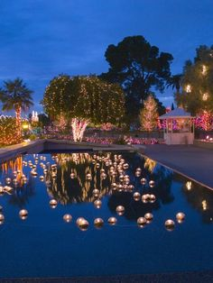 Candles In The Pool We Could Each Light A Candle And When