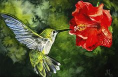 """Fly By"" by Kristen Matthews. #art #painting #watercolours #animals #birds #hummingbird #flower"