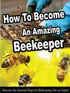 Free Kindle Book : How To Become An Amazing Beekeeper: Discover the Essential Steps for Beekeeping Like an Expert (Smart Beekeeping Series)