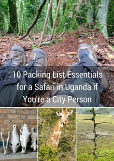 10 Packing List Essentials for a Safari in Uganda if You're a City Person | Sidewalk Safari