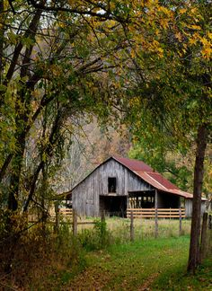 Barn through the woods..love the rusted tin roof....well used and weathered...
