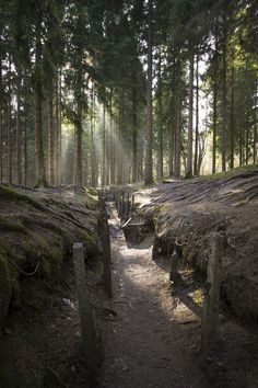 A trench in the woods near Fort Douaumont at Verdun battlefield, France   www.penlenspaintbrush.com