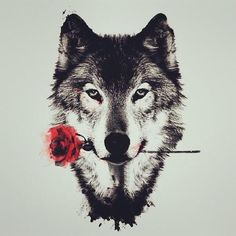 Wolf with a rose in its mouth art