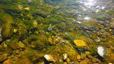 las piedras del rio