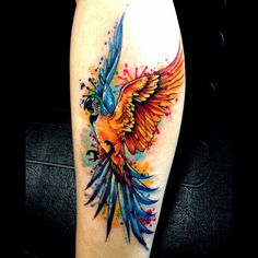 My latest tattoo. My Blue and Gold Macaw named Angus.