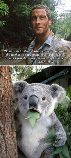 Dump A Day Funny Pictures Of The Day - 74 Pics