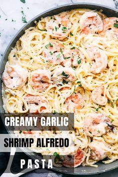Creamy Garlic Shrimp Alfredo Pasta Creamy Garlic Shrimp Alfredo Pasta is such a classic meal t. Light Pasta Recipes, Easy Healthy Pasta Recipes, Creamy Pasta Recipes, Easy Recipes, Shrimp Recipes For Dinner, Seafood Recipes, Noodle Recipes, Sausage Recipes, Cooking Recipes