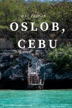 Day trip to Oslob, Cebu, Philippines - including watching whale sharks, beach bumming in Sumilon Island and visiting Tumalog Falls.