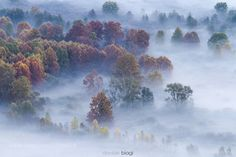 Mother nature by DavideBiagi. Please Like http://fb.me/go4photos and Follow @go4fotos Thank You. :-)