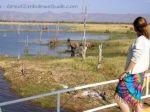 View, Lake Kariba, Zimbabwe from www.GreatZimbabweGuide.com