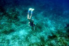 Where's the Best Diving and Snorkeling in Cuba?: Snorkeler near Maria la Gorda Beach