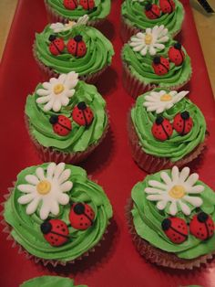 """ladybug cupcakes - cupcakes to go with the ladybug cake. these were favors for the kids to take home. buttercream green, royal icing for the rest. cherry cake with chocolate chip """"polka dots"""" throughout!"""