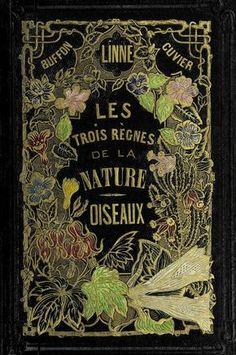 Histoire naturelle des oiseaux : - Biodiversity Heritage Library