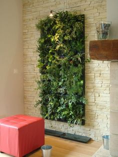 Add Greenery to Your Interior Space Using Vertical Gardens