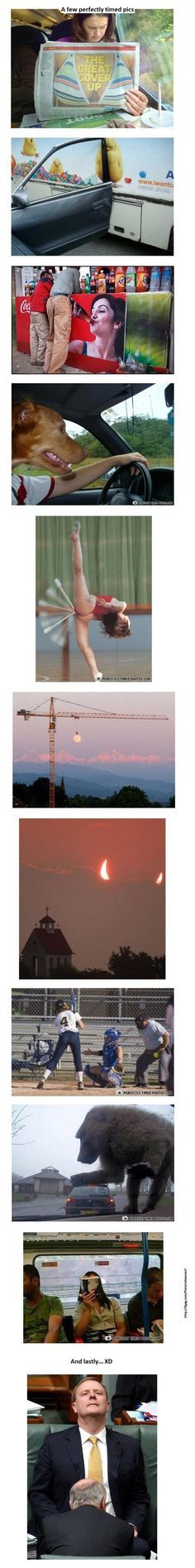 perfectly timed pics. The last one is the best