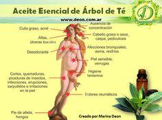 Remedio para el Acne con Aceite Esencial del Árbol del te