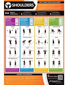 Multi Gym Workout Chart | Chest Expander Exercise Chart | Fit & Strong ...