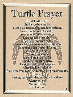 TURTLE Prayer Shaman Page Poster Animal Spirit Guide Art Celtic Wicca Native Am