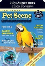 Las Vegas Pet Scene Magazine – July/August 2015 Inside This Issue: Parrot Ownership, Canine Swim Safety & Fun, Tips for Pet-Friendly Backyards, Canine Influenza, Desert Tortoise – A Special Pet, Feline H2O, Popular Riding Styles For Horse Lovers, National Pet Fire Safety Day… plus adoptable pets, coupons, pet events and much more!